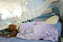 Malaria deaths reduced by 38 percent since 2000, says new report
