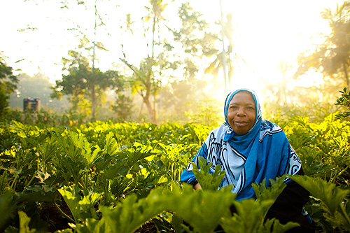 Securing a farmers' most important resource: the ground beneath their feet