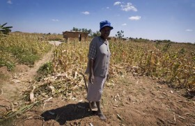 How we can help ensure that a dry season doesn't lead to a hunger season