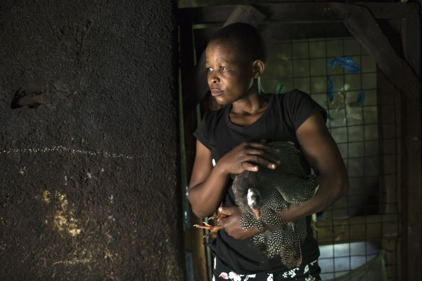 Janet Anyango, 23, attends poultry near the town of Mumias in western Kenya on April 29, 2015. Janet suffers from Fistula and she is being taken care of and hosted by health volunteer and Fistula survivor Nerena Auma through the help of the Women and Development Against Distress in Africa (WADADIA).