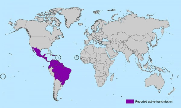 Map of reported transmission of Zika virus as of February 3, 2016. (Photo credit: CDC)
